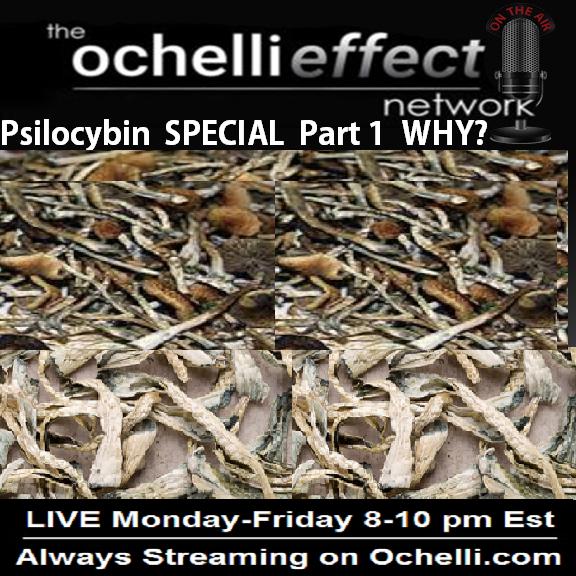 Ochelli Psilocybin Experiment One