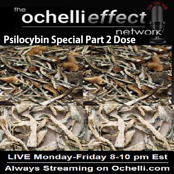 Ochelli Psilocybin Experiment Two